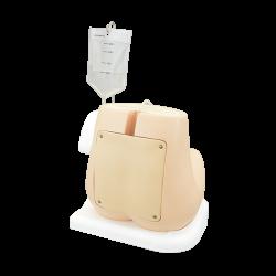 Lumbaal - Epiduraal Punctie Simulator M43B