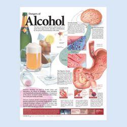 Wandplaat 'The Dangers of Alcohol'