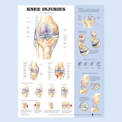 Wandplaat 'Knee Injuries'