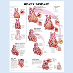 Wandplaat 'Heart Disease'