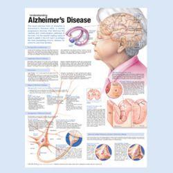 Wandplaat 'Understanding Alzheimer's'