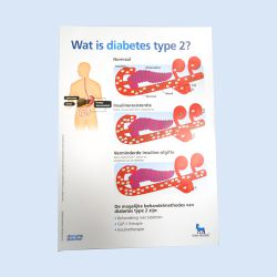 Wat is diabetes Type 2 ?  blok, verp. 1 stuks