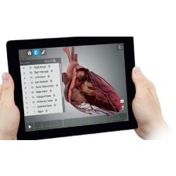 HeartWorks® Augmented Reality (AR) Trainingssysteem
