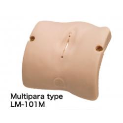 Obstetrisch Model – vulva ll (multipara type)
