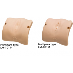 Obstetrisch Model – vulva ll set (primipara  en multipara type)