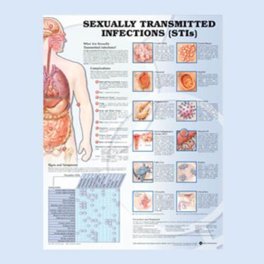 Wandplaat 'Sexually Transmitted Diseases'